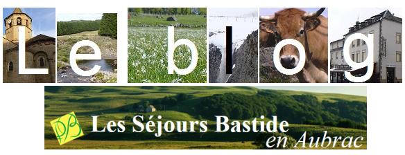 Logo blog bon