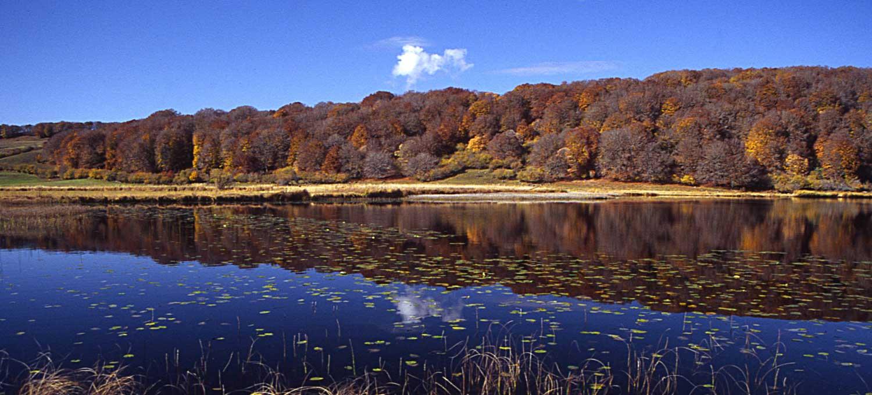 lac-des-salhiens-aubrac-lozere