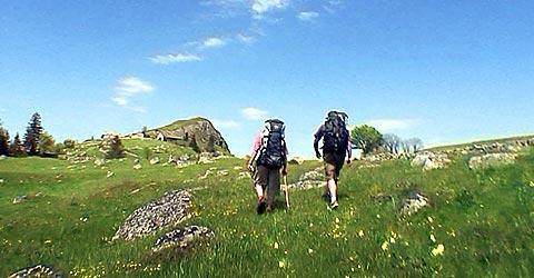 randonnée à la carte dans l'Aubrac en Lozère