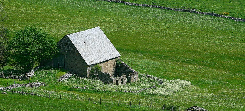 ruine-aubrac-lozere