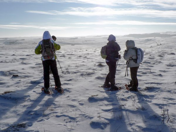 Randonnée en raquette l'hiver sur les plateaux de l'Aubrac